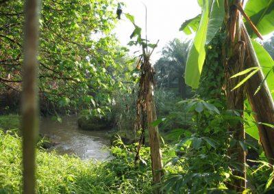 Deli-River