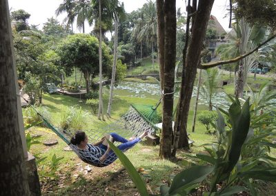relax_with_hammock2 (1)